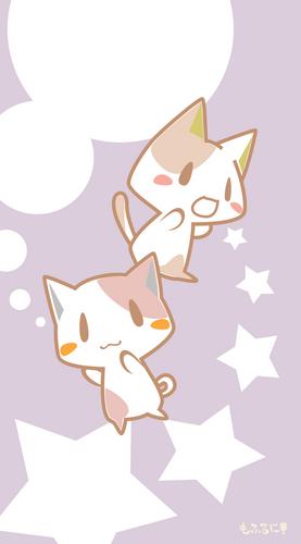 猫,にゃんこ