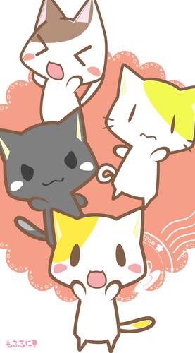 猫,ねこ,にゃんこ